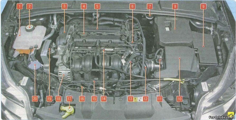 Подкапотное пространство Форд фокус 3