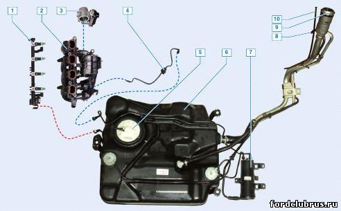 Элементы системы питания двигателя фокус 2