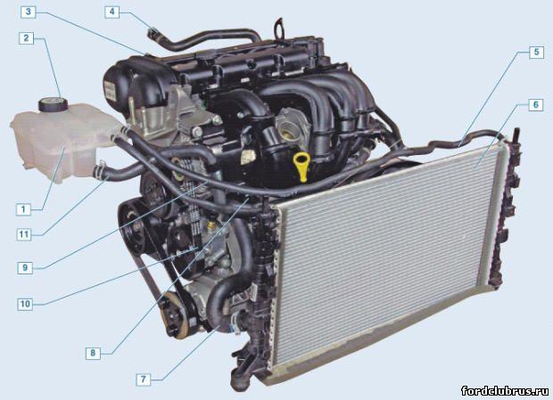 шланг радиатора отопителя;