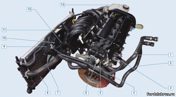 Детали системы охлаждения Форд Фокус 2